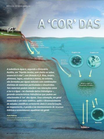 'Cor' das ÁgUas natUrais - Instituto do Milênio Estuários