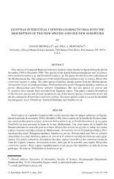 egyptian interstitial copepoda harpacticoida with ... - Luciopesce.net