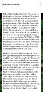 ein Rundgang mit Tiefgang Poll - Stadt Köln - Seite 7