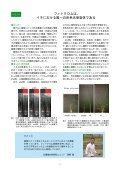No.24 (平成19年5月)〔PDF〕 - 農業生物資源研究所 - Page 6