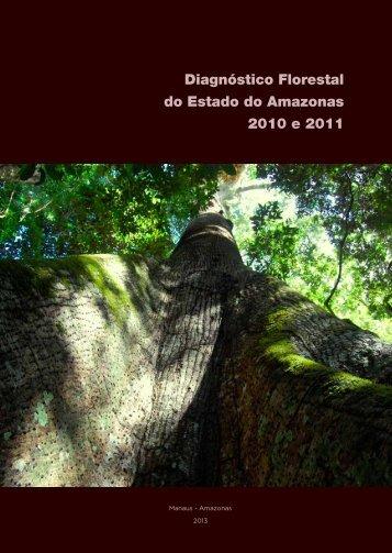 Diagnóstico Florestal do Estado do Amazonas 2010 e 2011 - Idesam