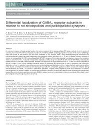 Differential localization of GABAA receptor subunits in relation to rat ...