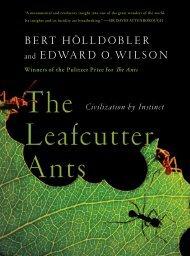 Download Leafcutter-Ants in PDF - FlipBookSoft