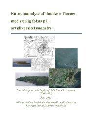 En metaanalyse af danske ø-floraer med særlig fokus på ...