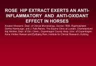 horses - Hyben Vital ApS