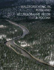 waldforschung in russland исследование лесов в ... - Waldwissen.net