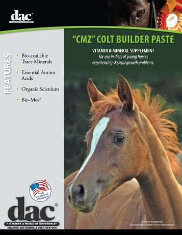 """CMZ"" COLT BUILDER pasTE - Direct Action Company"