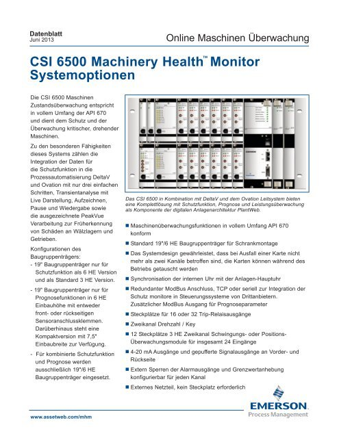 CSI 6500 Machinery Health™ Monitor Systemoptionen - Emerson ...