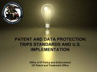 Presentation Materials in English [pdf] - United States Patent and ...