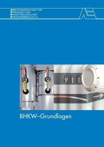 BHKW-Grundlagen 2010 - BHKW-Infothek