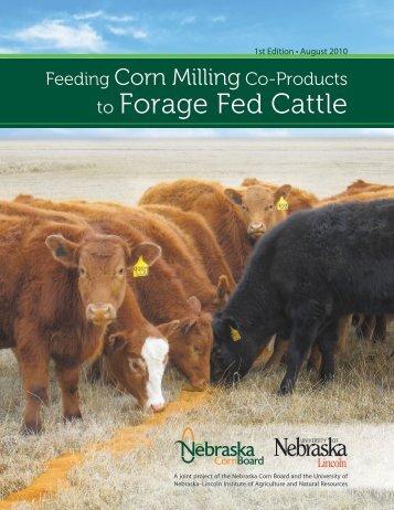 Feeding corn milling co-products to forage fed cattle, 1st edition.