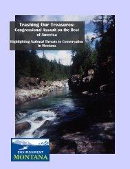 Download Report (PDF) - Environment Montana