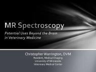 MR spectroscopy: potential uses beyond the brain - University of ...