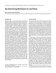 Sex-Determining Mechanisms in Land Plants - Barley World