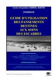 GUIDE D'UTILISATION DES PANSEMENTS DESTINES ... - ADIPh