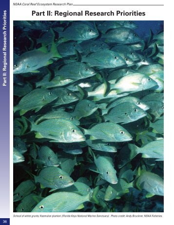 Regional Research Priorities - NOAA Coral Reef Information System