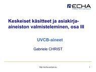 UVCB -aine - Europa