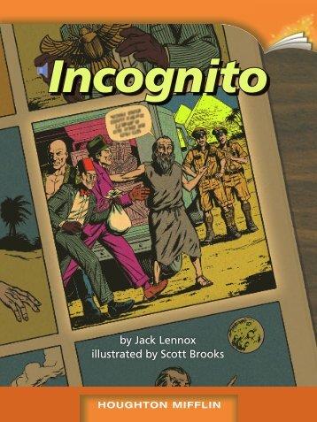 Lesson 16:Incognito