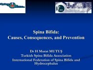 Spina Bifida - Flour Fortification Initiative