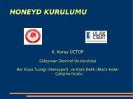HONEYD KURULUMU - Ulakbim