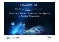 Exploring the Dark - Kivi Niria
