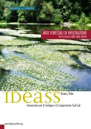 AREE FORESTALI DI INFILTRAZIONE - Ideassonline.org