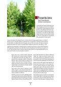 AREE FORESTALI DI INFILTRAZIONE - Ideassonline.org - Page 3