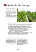AREE FORESTALI DI INFILTRAZIONE - Ideassonline.org - Page 5
