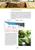 AREE FORESTALI DI INFILTRAZIONE - Ideassonline.org - Page 6