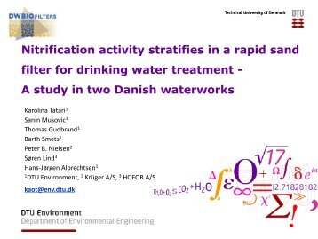 Nitrification activity stratifies in a rapid sand filter for drinking water ...