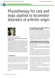 Physiotherapy for Cats and Dogs Applied to Locomotor Disorders of ...