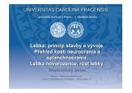 E - Anatomický ústav 1.LF UK - Univerzita Karlova