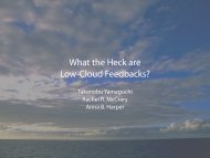 What the Heck are Low-Cloud Feedbacks? - cmmap