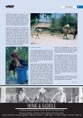 ewu regio - western-videos.com - Seite 7