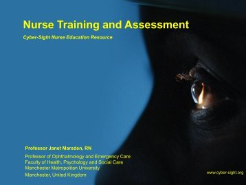 Assessing and methods of assessment - Cyber-Sight