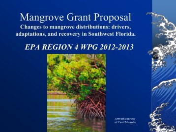 Mangrove Grant Proposal - Southwest Florida Regional Planning ...
