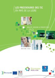 CRCI Usage TIC PDL 2.indd - (CCI) de la Mayenne