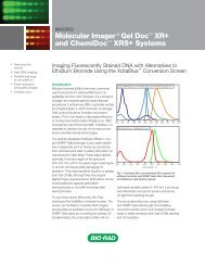 Molecular Imager ® Gel Doc™ XR+ and ChemiDoc™ XRS+ Systems