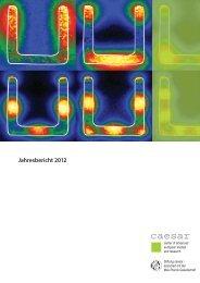 Jahresbericht 2012 - Forschungszentrum caesar