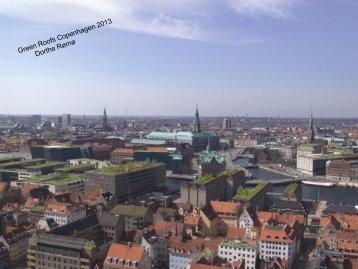 Green Roofs in Copenhagen - Vand i Byer