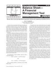MF291 Balance Sheet--A Financial Management Tool