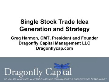 Single Stock Trade Idea Generation and Strategy ... - Hamzei Analytics