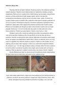 Konzervatorsko-restauratorski radovi na slici Carmelo Reggio - Page 4