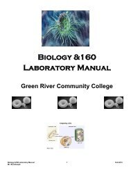 Lab Packet - Instruction.greenriver.edu - Green River Community ...