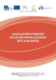 legislativní vymezení sociálně právní ochrany dětí a mládeže