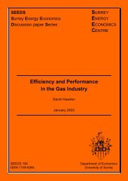 Efficiency and Performance in the Gas Industry - Surrey Energy ...