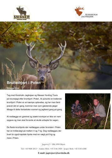 Brunsthjort i Polen - Korsholm Jagtrejser