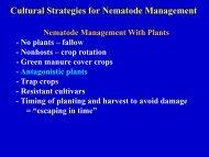 Cultural Strategies for Nematode Management
