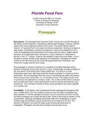 Pineapple - Sarasota County Extension - University of Florida