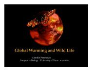 Powerpoint Presentation: Global Warming and wild life